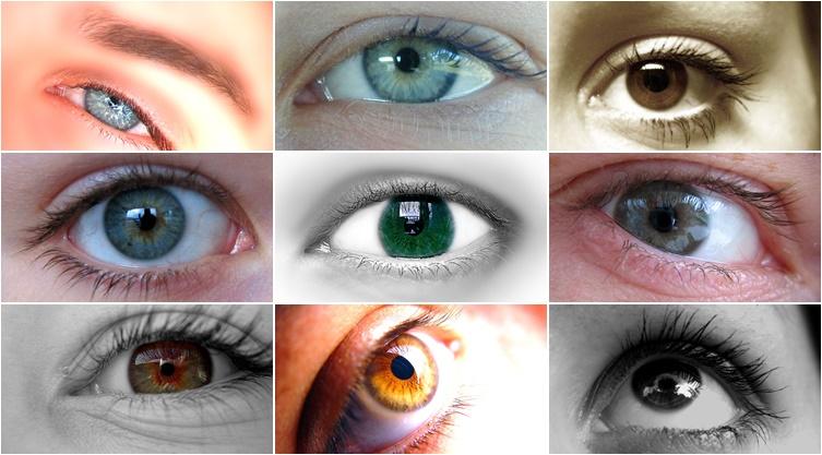 pomoc-niewidomemu