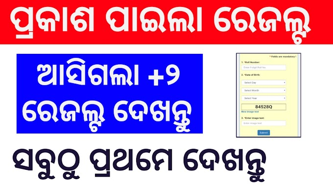 +2 Science Results Odisha Now Published Check Online
