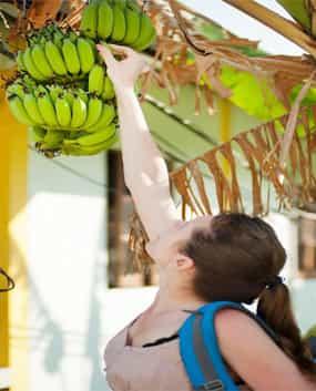 Can Banana deal with Vitiligo