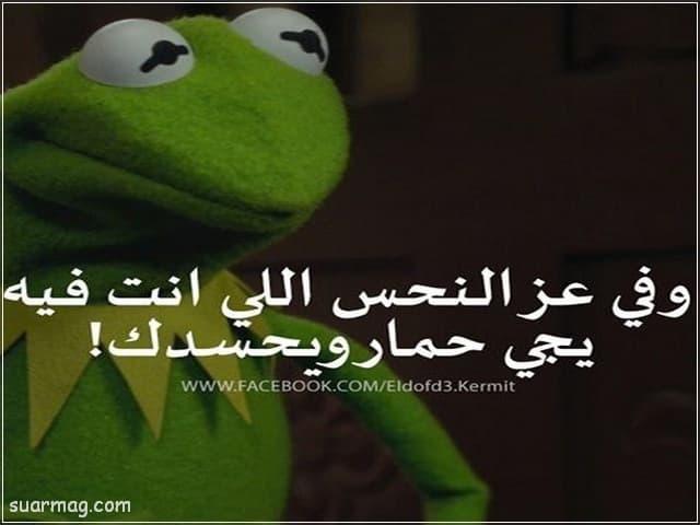 بوستات مضحكه مكتوبه 9   Fb Funny written posts 9