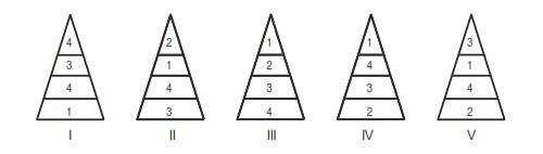 Piramida trofik