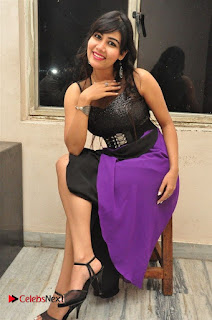 Telugu Actress Rachana Smith Stills at Money is Honey Audio Release  0102.jpg