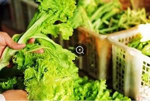 Cara Mudah Ketahui Tanda Fresh atau Tidak Bahan Makanan Anda