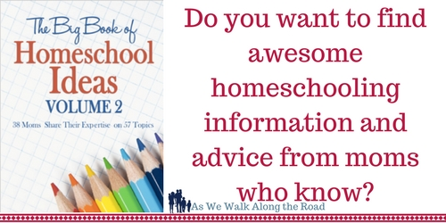 Review of The Big Book of Homeschool Ideas Volume 2