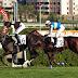 24 Ağustos At Yarışı Galopları