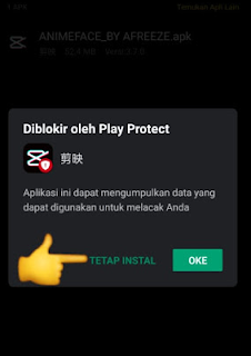 aplikasi edit foto anme diblokir play protect