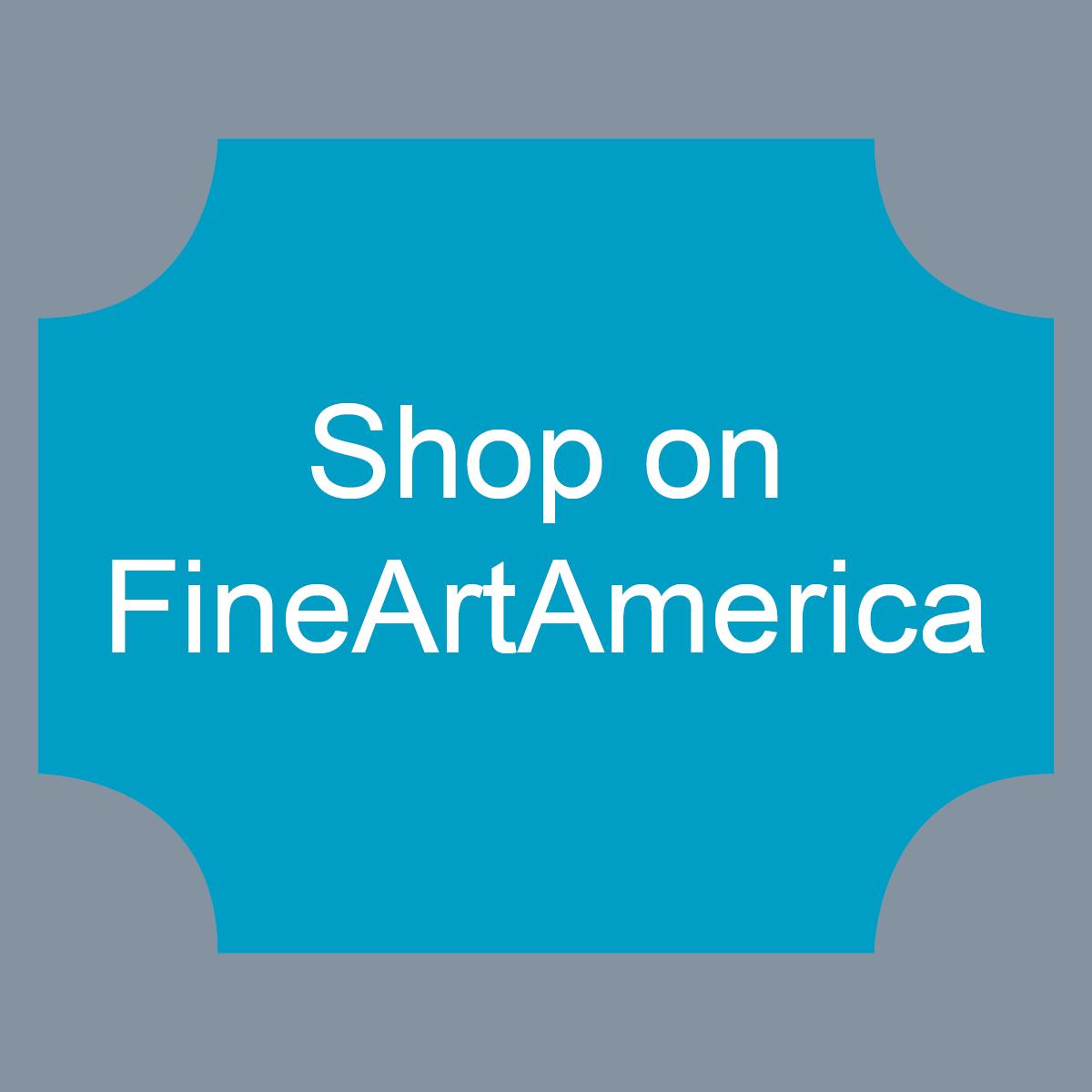 Fine Art America Shopping