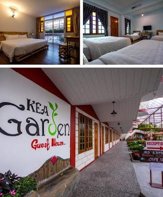 Hotel Kea Garden bilik penginapan