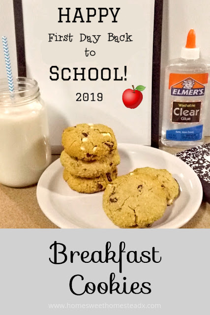 Breakfast Cookies - Home Sweet Homestead - These Breakfast Cookies are filling, gluten and dairy free, customizable, and perfect for quick grab-an-go breakfasts. Oh, and did I mention they're delicious?!