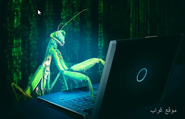 Bug Ransomeware Malware