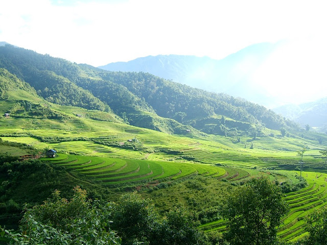 Explore The Tram Tau Green Valley of Yen Bai Province 1