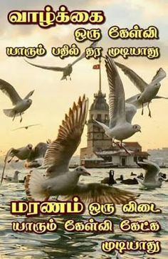 100+ Best Good Morning in Tamil Images With Quotes (2019) | Good