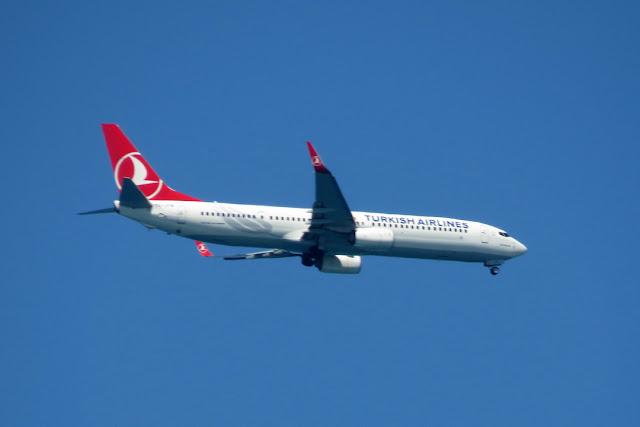 Turkish Airlines, port of Livorno