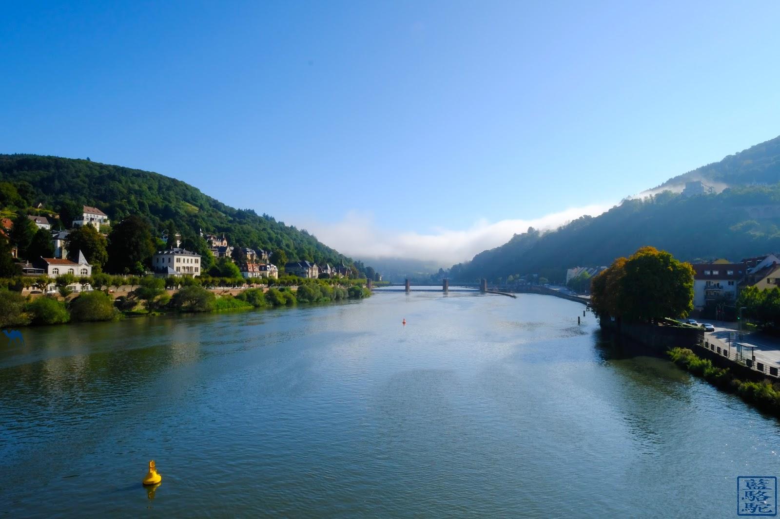 Le Chameau Bleu - Blog Voyage Heildeberg Allemagne - Le Neckar