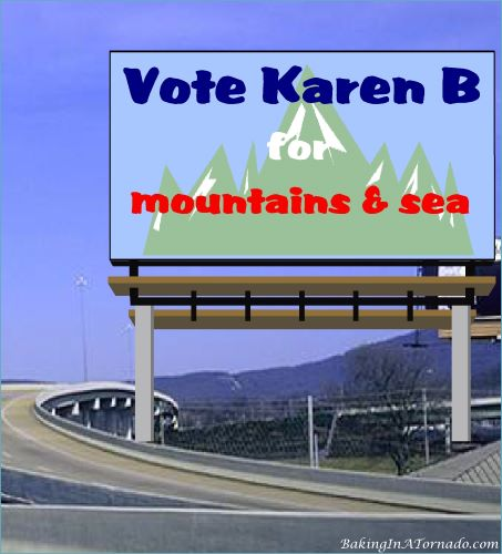 Vote Karen B, for mountains and sea | graphic created by and property of www.BakingInATornado.com | #MyGraphics