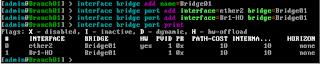 Konfigurasi Interface Bridge router Branch1