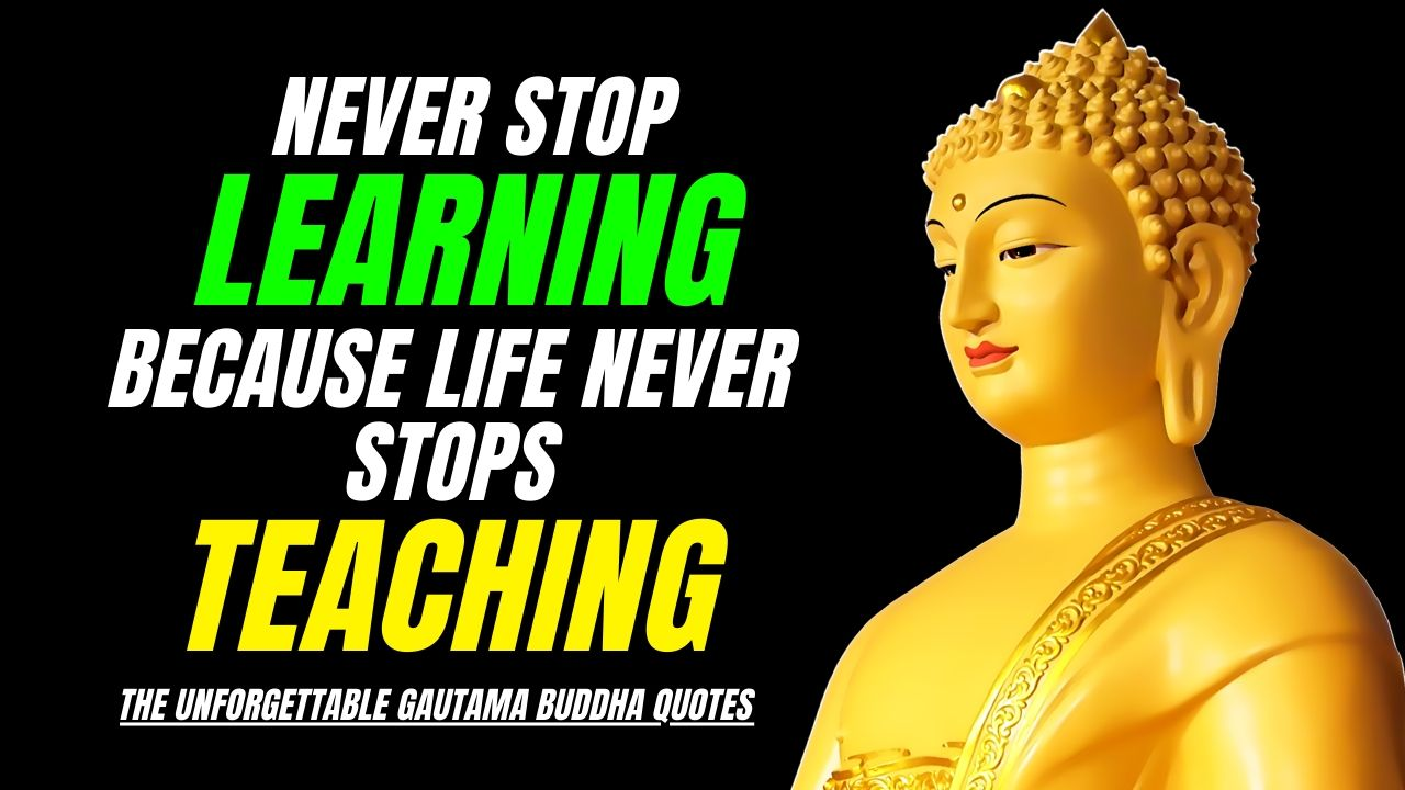 The Buddha Quotes Wallpaper for Desktop