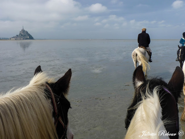 Balade à cheval dans la baie du Mont-Saint-Michel