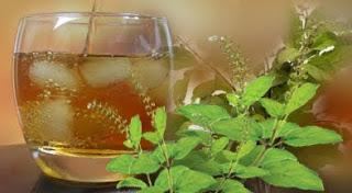 तुलसी -शर्बत -आयुर्वेदिक- औषधि , Tulsi- Sudha- Recipe- in- Hindi, तुलसी- का- शर्बत, Tulsi- Sudha- Recipe, Holy Basil Juice Recipe