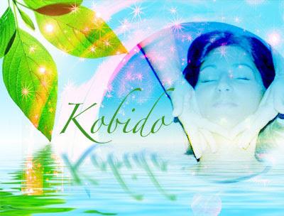 offre-promotionnelle-Kobido