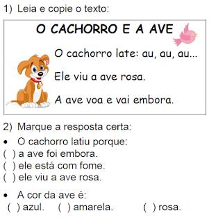 Texto O CACHORRO E A AVE, de Elisângela Terra