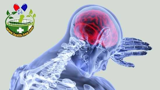 الأليات الفيزيومرضية للإجهاد والتوتر العصبي والضغط النفسي المزمن