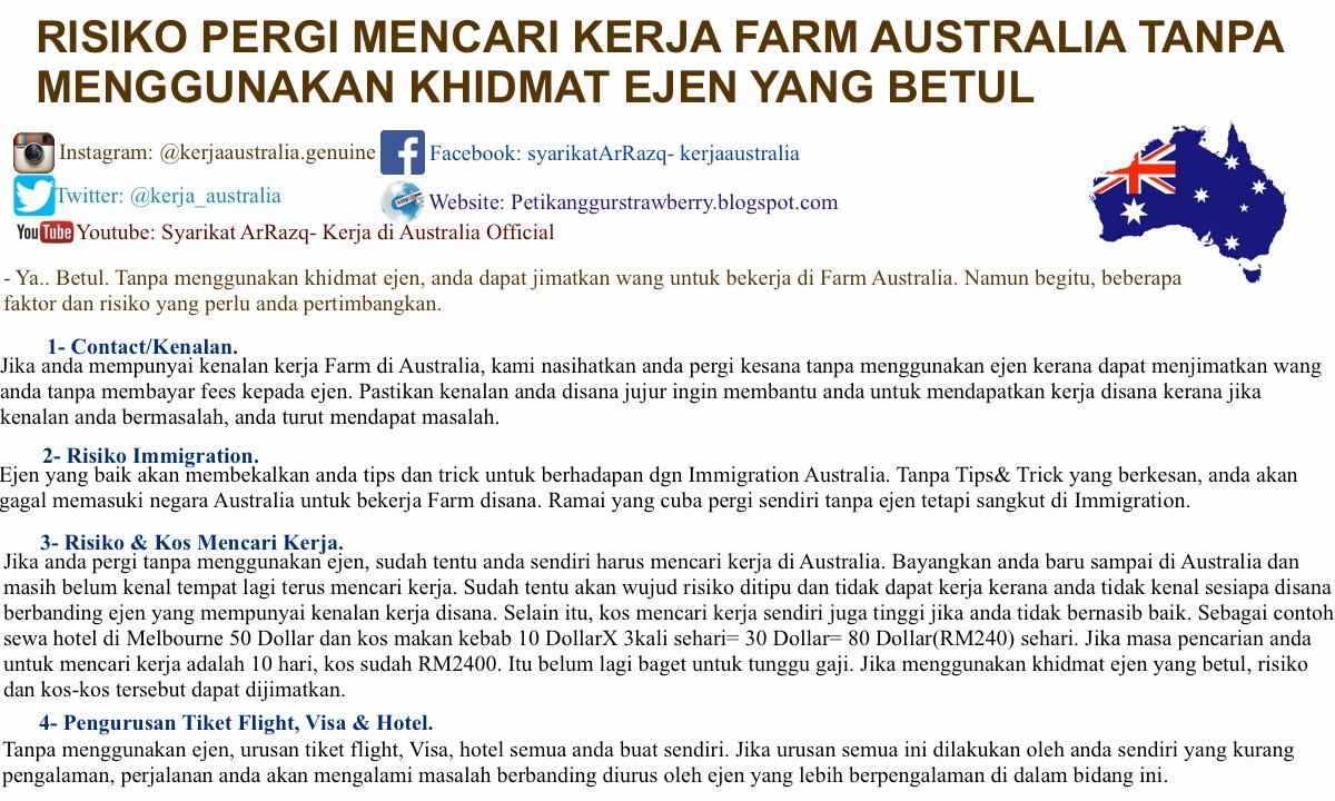 kerja di australia , kerja petik buah di australia