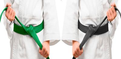 diferença green black belt lean six sigma