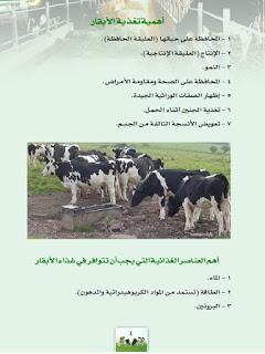 كتاب تربية الأبقار و تغذية العجول