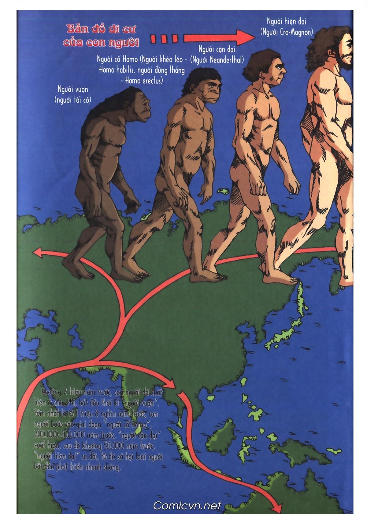 Lược sử thế giới bằng tranh