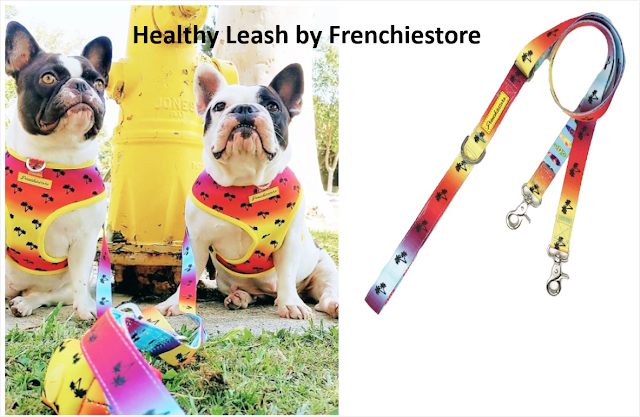 Healthy Leash by Frenchiestore