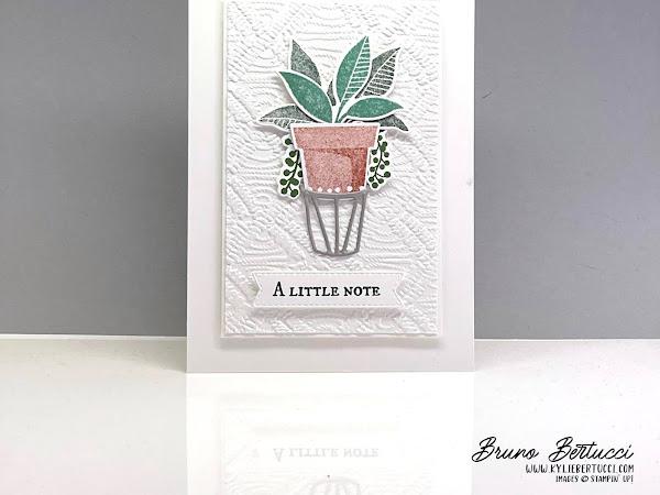 A Little Note | Plentiful Plants Bundle