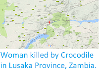 https://sciencythoughts.blogspot.com/2017/09/woman-killed-by-crocodile-in-lusaka.html