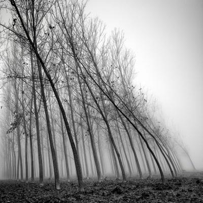 Água e vento, a força da natureza, fotografia de Pierre Pellegrini