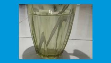 salah satu sifat cahaya yaitu dapat dibiaskan atau dibelokkan seperti pada sendok yang diletakkan di dalam gelas yang berisi air