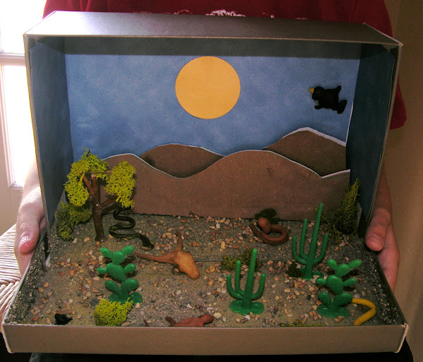 namc montessori studying zoology lower elementary vertebrate animals student diorama of desert snake