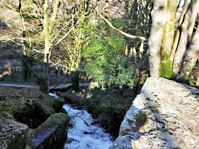 Luxulyan Valley Cornwall