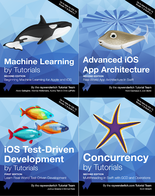 Advanced IOS Mini Bundle