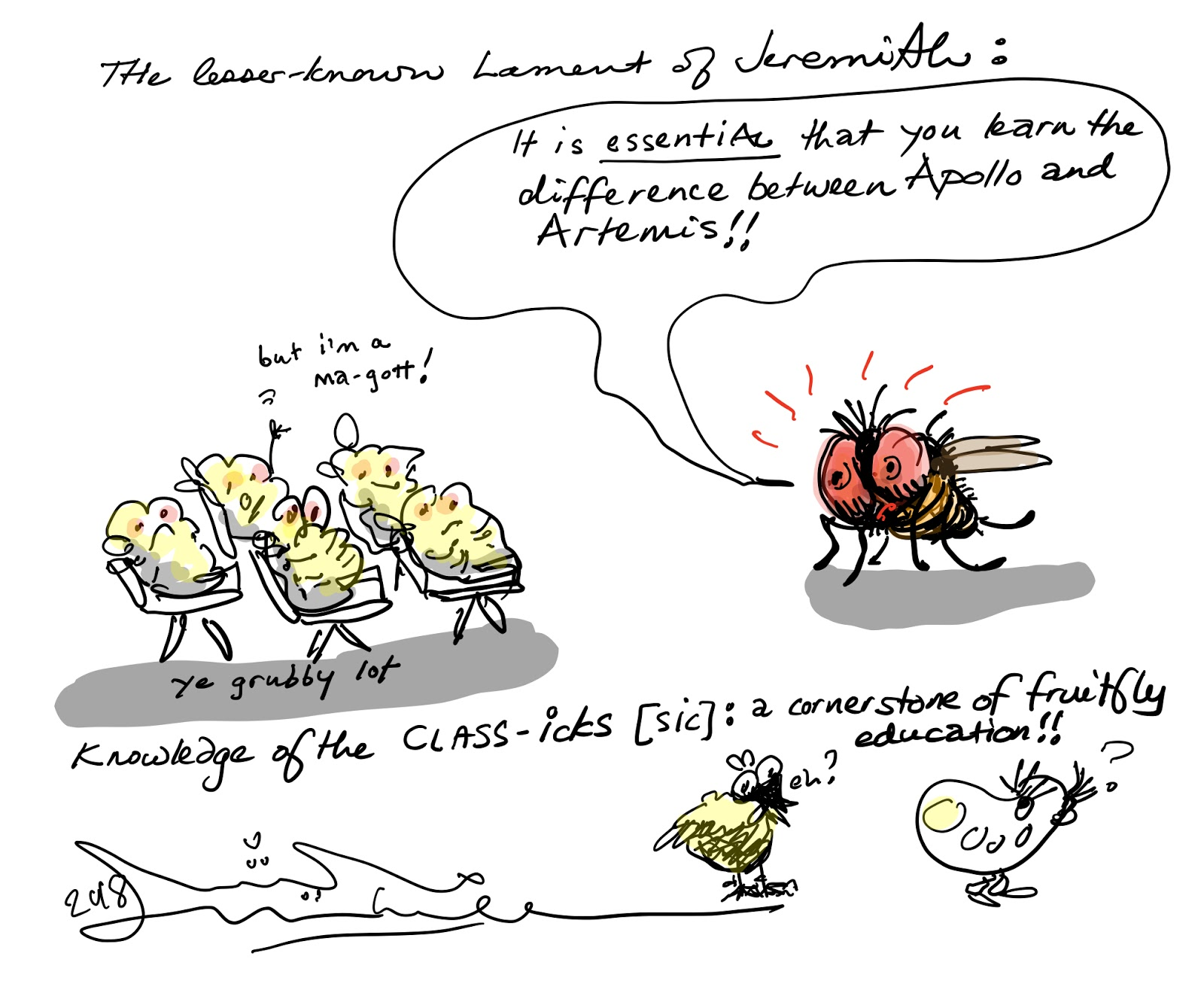 A classical education for fruit flies
