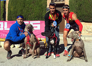 Canicross Mushing Aranjuez