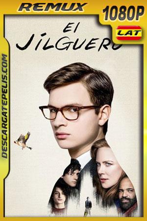 El jilguero (2019) 1080p BDRemux Latino – Ingles