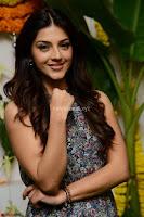 Actress Mehreen Kaur Latest 2017 Po Stills5 ~  Exclusive Celebrities Galleries.jpg