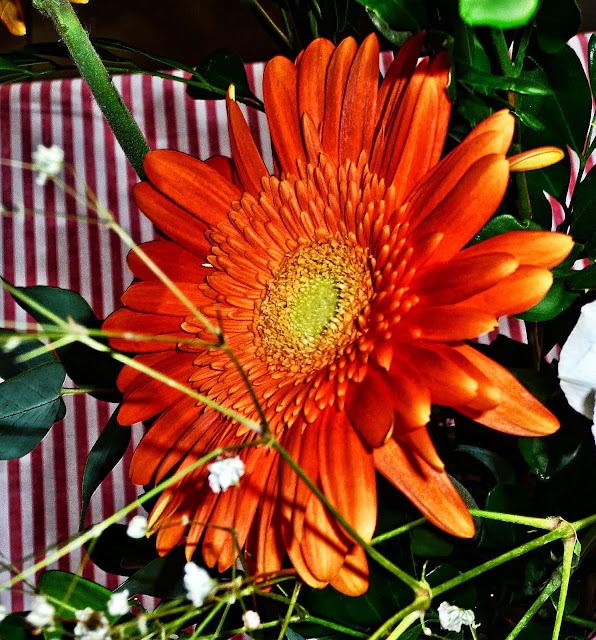 Flor naranja con centro amarillo
