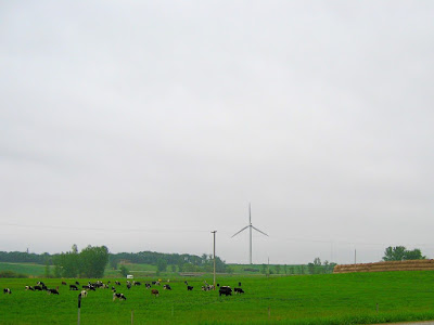 shall we fill our cities with dairies and turbines?