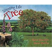 Starting Life Tree