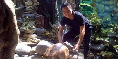 Jasa Pembuatan Taman kering di Surabaya