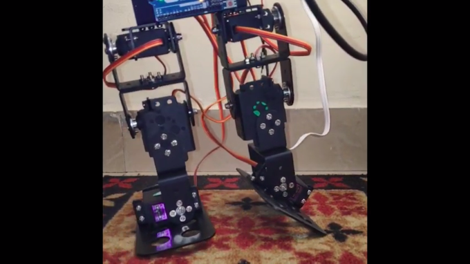 Biped Walking Robot