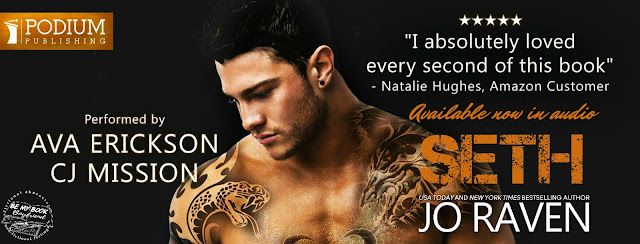 Review Seth Damage Control 3 By Jo Raven Jeris Book Attic