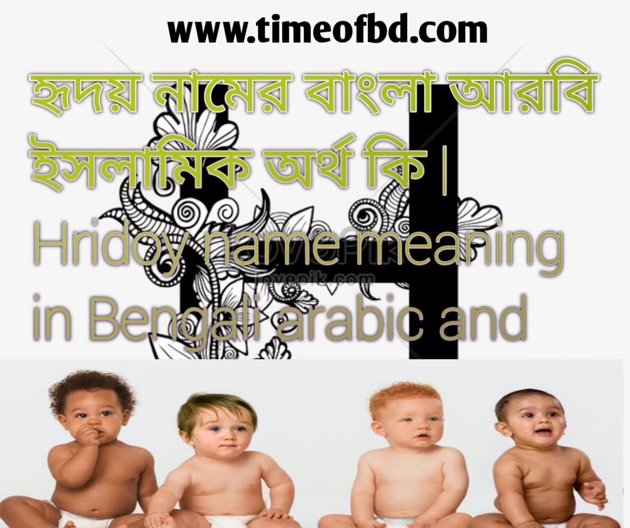 হৃদয় নামের অর্থ কি, হৃদয় নামের বাংলা অর্থ কি, হৃদয় নামের ইসলামিক অর্থ কি, Hridoy name in Bengali, হৃদয় কি ইসলামিক নাম,