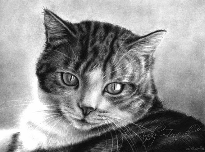 20+ Beautiful Realistic Cat Drawings To inspire you - Fine ...